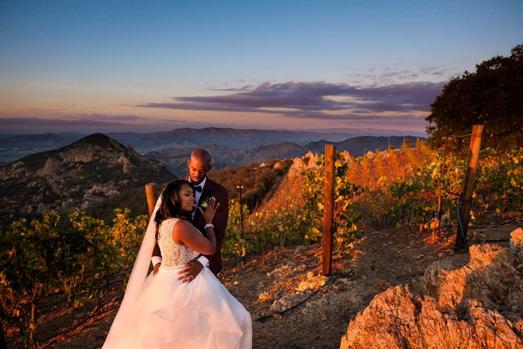 California Wedding by Elegant Events Planning and Design 6(1)