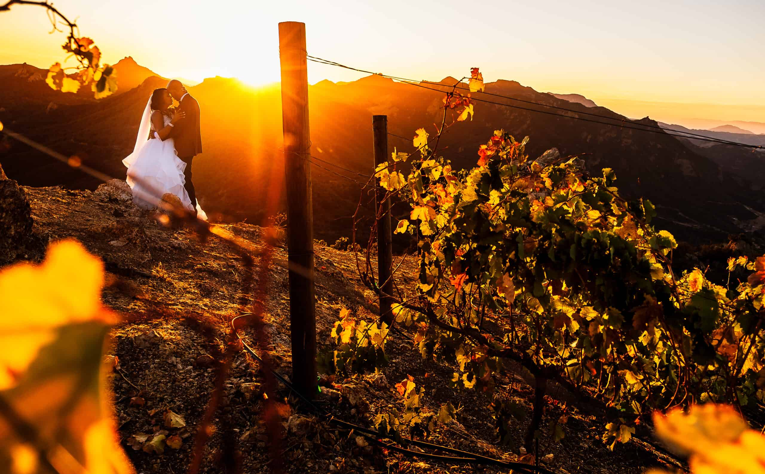 California Wedding by Elegant Events Planning and Design 8