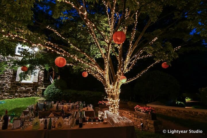 Light Up Bar Design Tree Decor Reception